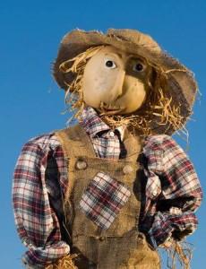 ScarecrowPromo