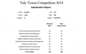 Tidy-Towns-2014-Cullohill-Scorecard