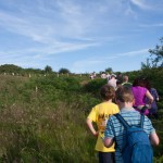 Plenty of local events in Laois Walks Festival 2018