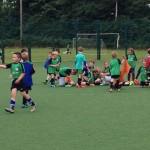 FAI Summer Soccer Schools at Lions AFC this Summer 2019