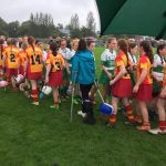 The Harps Camogie back up and running for 2017