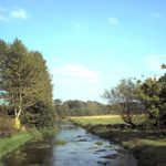 Public Meeting on Rivers and Wetlands – June 1st 2017 🗓
