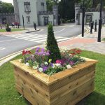 Durrow Tidy Towns Early Spring 2019 Update