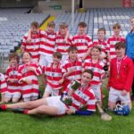 Our Lady's Meadow win Cumann na mBunscol Hurling Final 2019
