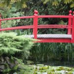 The Japanese Gardens and The National Stud for Senior Citizens Trip 2019